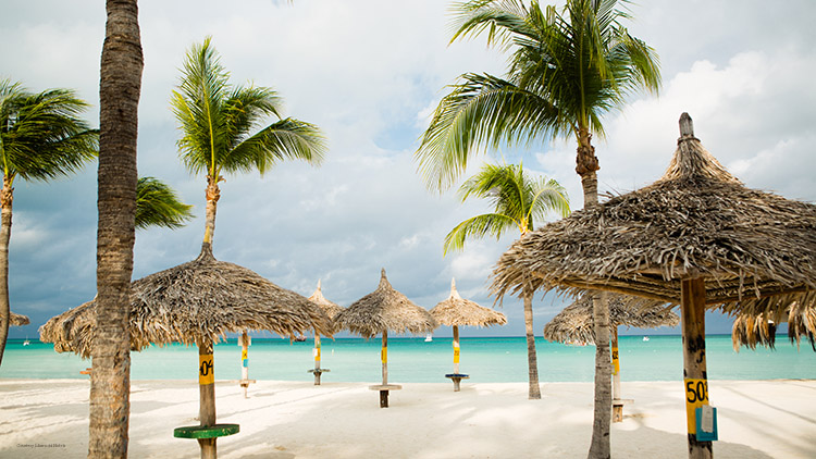 Aruba Marriott Resort Palapas Courtesy