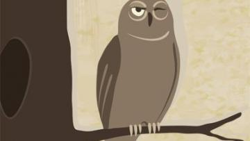Night-Owls-400x300_0.jpg